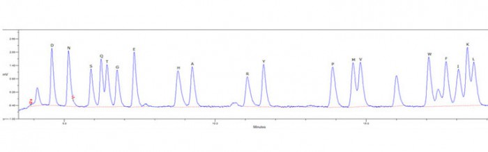 N-terminal HPLC chromatogram distingushing all 20 amino acids except Cysteine