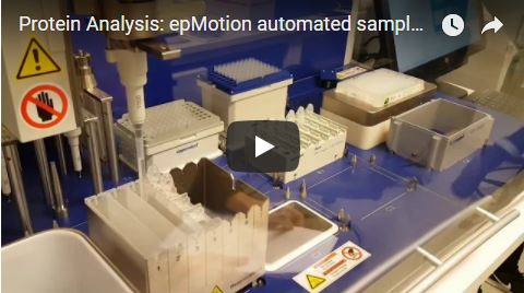 epMotion automated protein sample preparation
